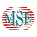 Media, Sports and Entertainment Group (MSE)